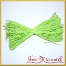Sznurek dekoracyjny papierowy Jasno zielony 45mb