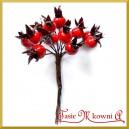 Dzika róża czerwona na druciku 12szt.