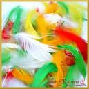 Piórka kolorowe - biało/zielono/żółto/pomarańczowe 10g