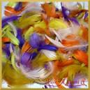Piórka kolorowe - fioletowo/żółto/pomarańczowe 10g
