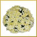 Niezapominajki - CYTRYNOWE kwiatuszki 12szt.