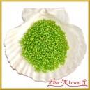 Perełki 3mm jasno zielone perłowe
