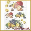 Papier ryżowy A4 R396 - owoce