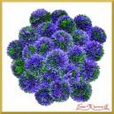 Kwiat cebuli fioletowy 1szt./40cm