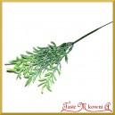 ASPARAGUS - zielona gałązka ozdobna 25cm/1szt.