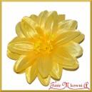 DALIA 12cm/1szt. żółta