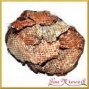 Plastry kory sosny - susz naturalny 1kg (495020)