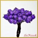 Dzika róża oszroniona fioletowa podwójna gałązka 40 owoców