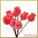 Dzika róża oszroniona malinowa 1 gałązka 8 owoców