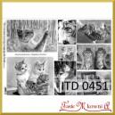 Papier do decoupage KLASYCZNY A4 D0451M - czarno-białe koty