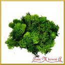 Chrobotek reniferowy 50g – mech ozdobny ciemno zielony