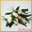 TULIPANY -białe z amarantem 6szt.