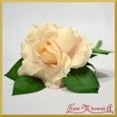 RÓŻA KRÓTKA ok 30 cm delikatna brzoskwinia