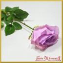 RÓŻA DŁUGA ok 70cm pastelowy fiolet
