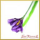 IRYS -CIEMNY FIOLET kwiat sztuczny z łodygą 45cm