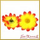 Kwiatuszki materiałowe stokrotki DUŻE czerwono-żółte 4,5cm