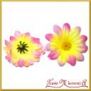 Kwiatuszki materiałowe stokrotki DUŻE żółto-różowe 4,5cm