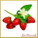 Truskawki na druciku z listkami - gałązka 5 owoców