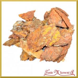 Plastry kory - susz pomarańczowy 12-15cm 1kg