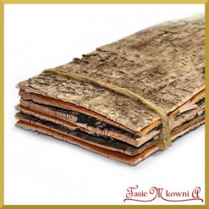 Plastry drewna naturalne płaskie zestaw 6szt