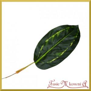 Liść DIFFENBACHII 2 - ciemno zielony 34cm