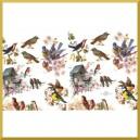 Papier do decoupage KLASYCZNY A4 D0389 - ptaszki, budka dla ptaków, sikorki