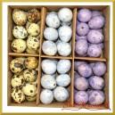 NATURALNE jajka nakrapiane 3 kolory (niebieskie fioletowe naturalne) pudełko 72szt.