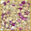 Susz KONICZYNA pąki ozdobne fioletowo-naturalne 200g