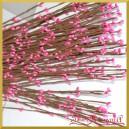 Gałązka ozdobna amarantowe pączki 10szt/60cm