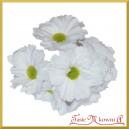Bukiecik OZDOBNY duże kwiatki materiałowe BIAŁE drucik 5cm/6szt.