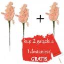 SUSZ OZDOBNY JASNY RÓŻ wiązka 28cm -2+1 gratis