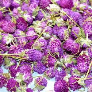 Susz KONICZYNA pąki ozdobne fioletowe 100g