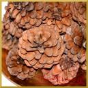 NATURALNE szyszki ozdobne 3-5cm/24szt.