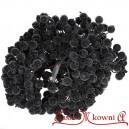Dzika róża oszroniona CZARNA podwójna gałązka 40 owoców