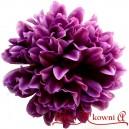 CHRYZANTEMA SATYNOWA fioletowa - duża główka 14cm