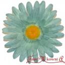 Gerber niebieski - główka kwiatowa