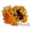 Jagódki ŻÓŁTO-POMARAŃCZOWE podwójna gałązka 40 owoców