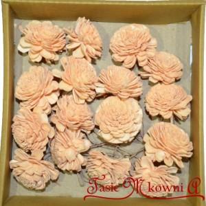 SHOLA POTEA Kwiatuszki NA PIKU 16szt. POMARAŃCZOWE - pudełko