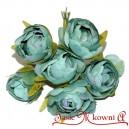 Róża kameliowa wyborowa morska ZIELEŃ 6szt