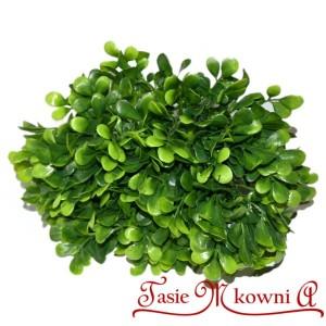 BUKSZPAN - zielona gałązka ozdobna 23cm 12szt. proste listki