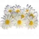 Kwiatuszki materiałowe margarytki DUŻE białe 4,5cm
