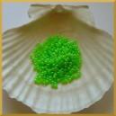 Perełki 3mm zielone opalizujące