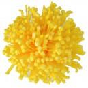 Chryzantema piankowa strzępiasta ŻÓŁTA - główka kwiatowa 10cm