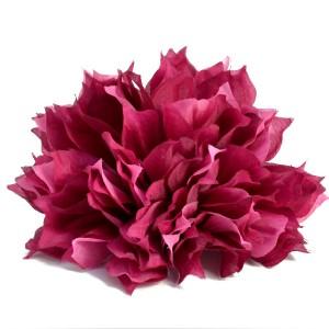 Chryzantema piankowa strzępiasta JASNY RÓŻ - główka kwiatowa 10cm