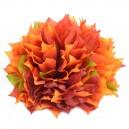 Dalia strzępiasta pomarańczowo - bordowa cieniowana - główka kwiatowa 12cm