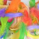 Piórka kolorowe - MIX KOLOROWY 10g