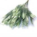 Gałązka zielono-biała ze sprężynką 25 cm / 10szt