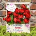 Nosidło doniczka na Dzień Matki, Dzień Mamy + Zawieszka serce gratis