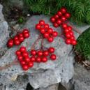 Jagódki czerwone na druciku 6-pak