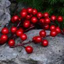 Jagody, kuleczki czerwone